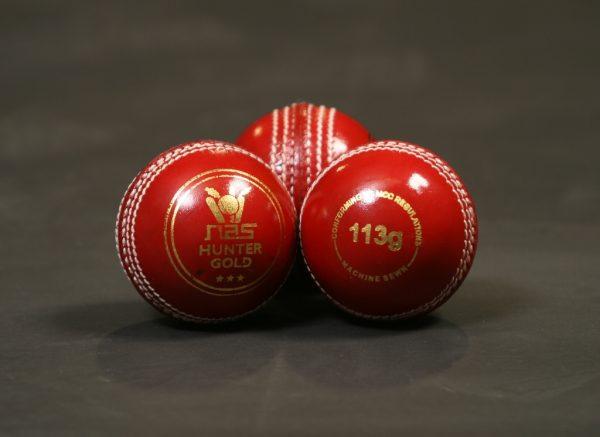 NAS Cricket Ball - Hunter Gold 113g Red 100282