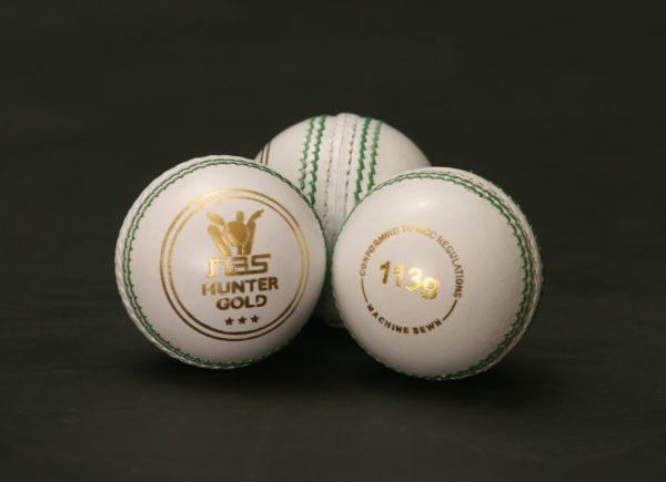 NAS Cricket Ball - Hunter Gold 113g White 100283